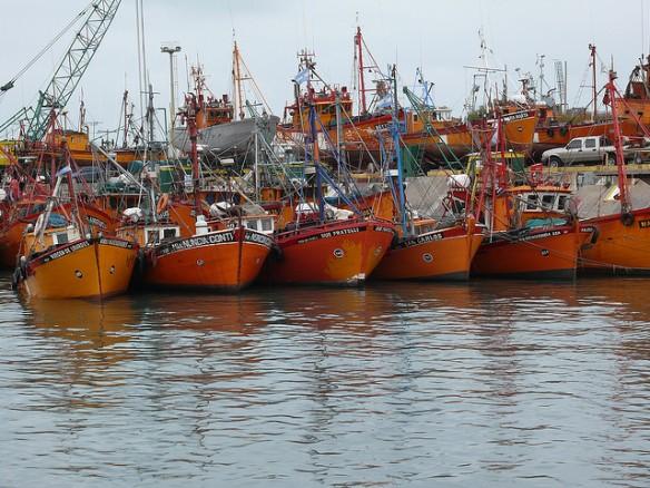 Puerto Mar del Plata, Pcia. Bs. As. Argentina. Foto: Pablo González