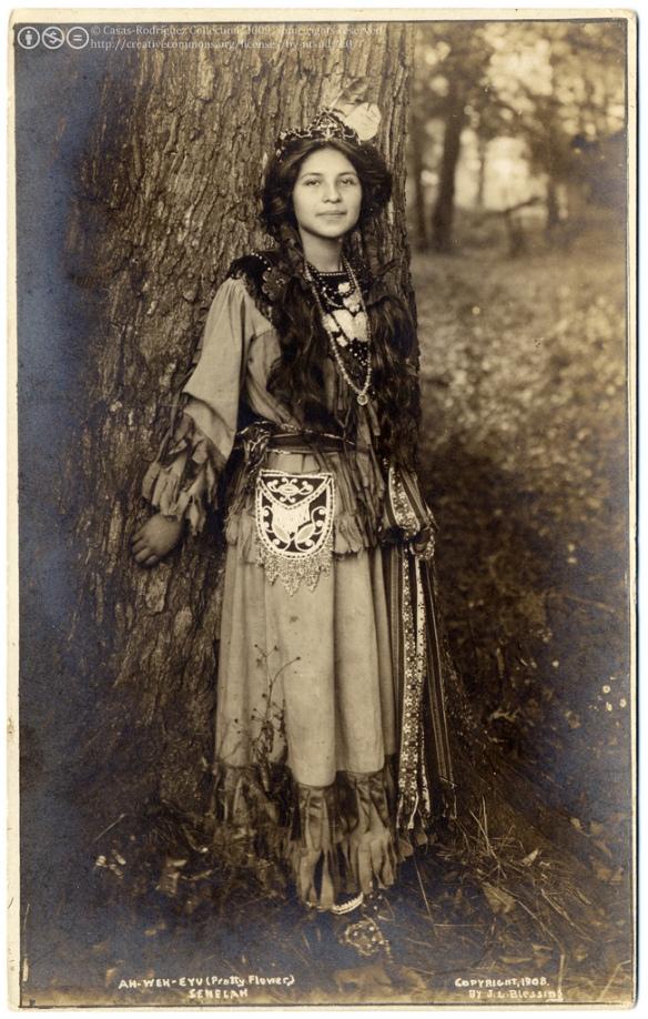 Ah-Weh-Eyu (Flor Bonita). Foto de 1908 tomada por el estudio, Salamanca, Nueva York, Estados Unidos a una representante del pueblo Seneca. Según la wikipedia los seneca  se autodefinen como una nación de la Confederación Iroquesa. Ellos se llamaban a sí mismos tshoti-nondawaga o oneniuteronron, gente montañesa. Vivían en los márgenes del lago Seneca y del río Genesee (Nueva York). Hoy ocupan las reservas de Towananda, Catarauga, Alleghany y Oil Springs (Nueva York) y un puñado de ellos viven con los cayuga en Oklahoma y otros en Grand River (Ontario). Según el censo del 2000, había 13.676 seneca registrados, sin contar los que había con los cayuga.